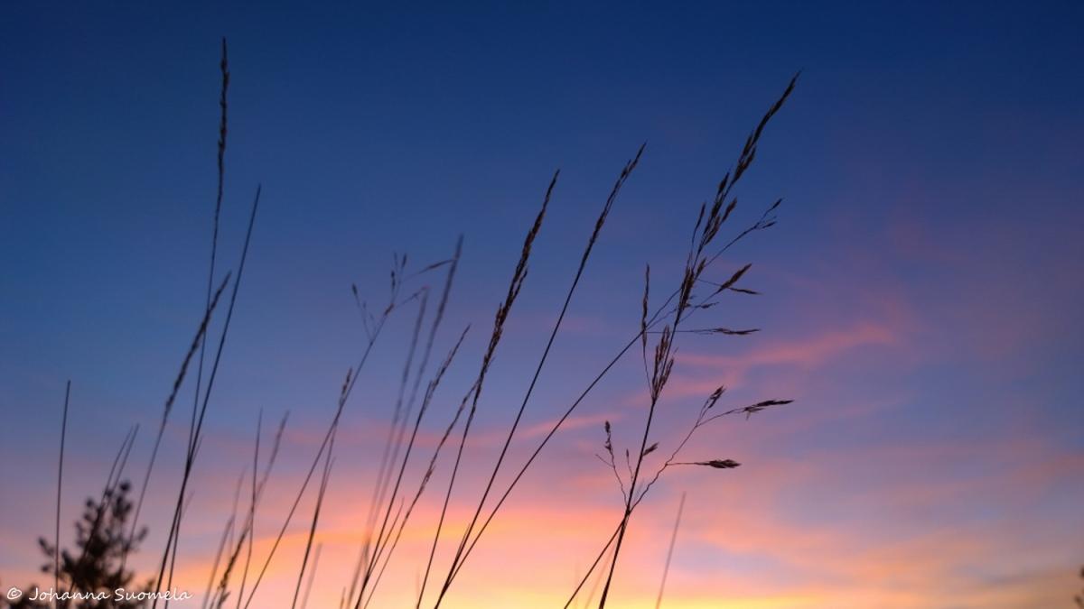 Auringonlasku pastellivari