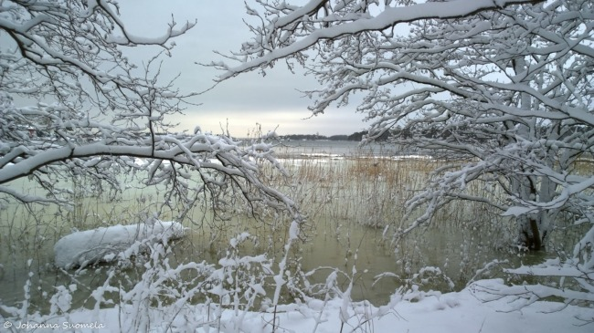 Lumipyrynjalkeen ranta