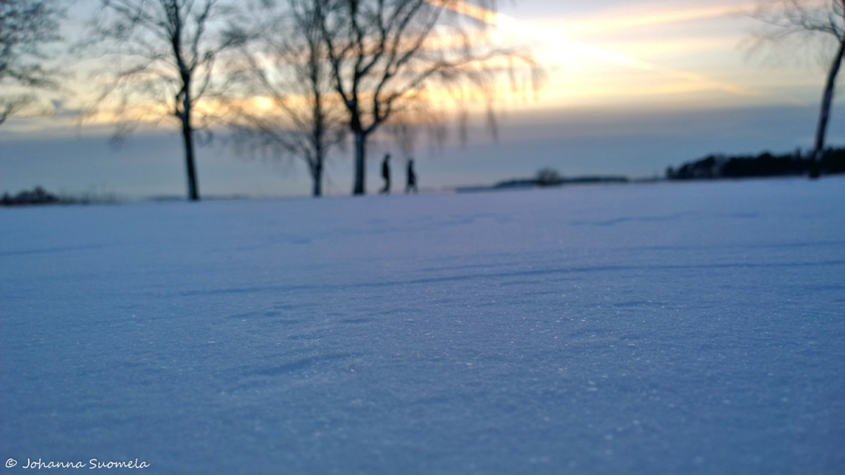 Lumihanki auringonlasku