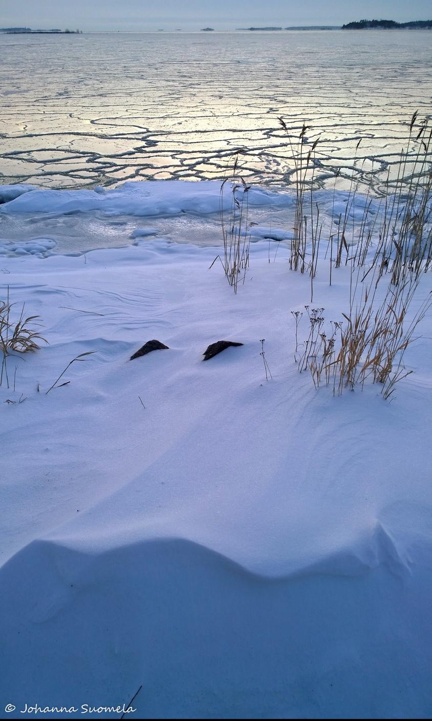 Lumikinos jaatyva meri