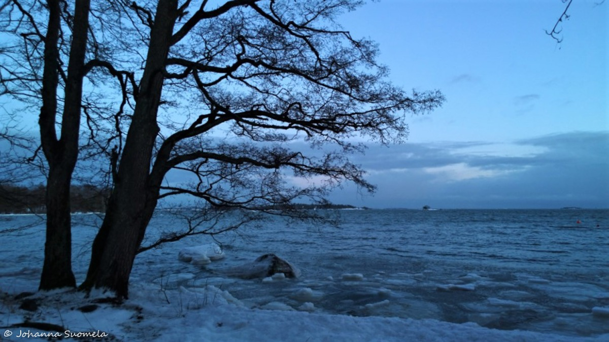 Auringonlasku Sininen hetki Merenranta