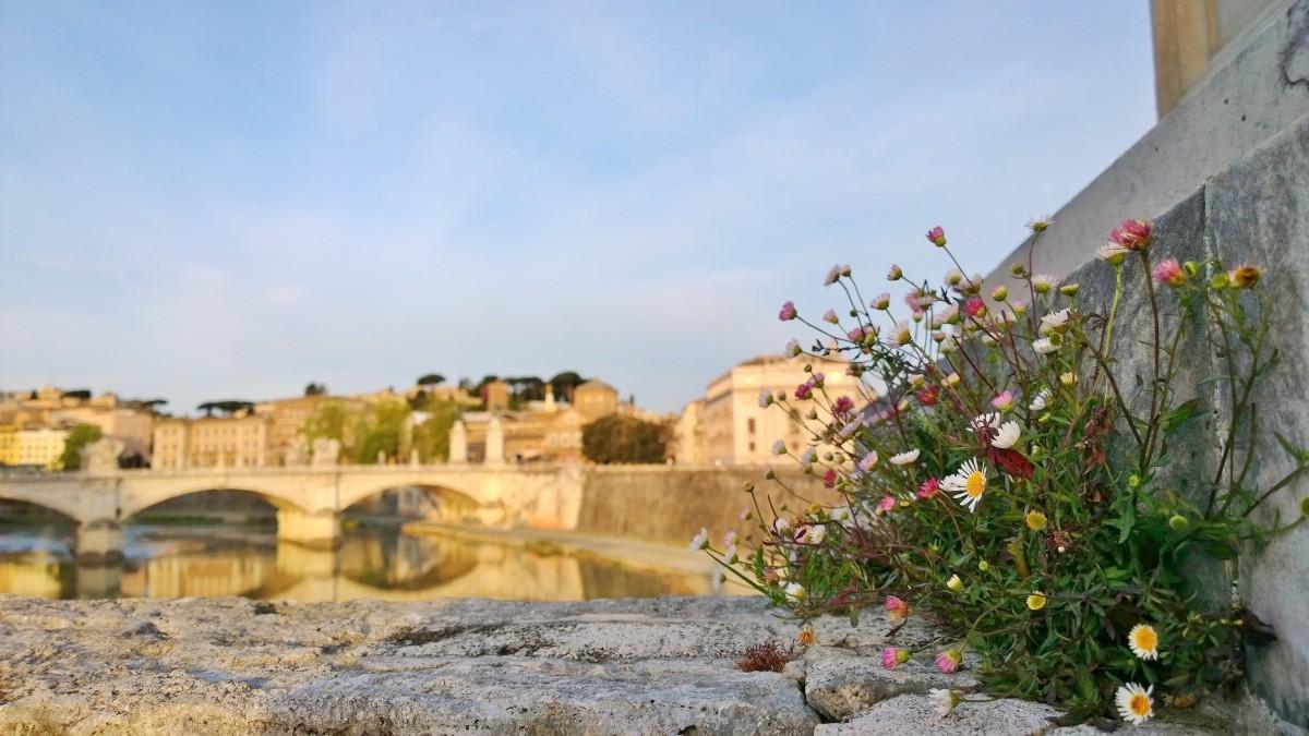 Rooma Tiberjoki