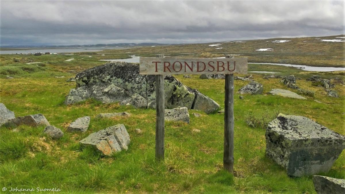 Hardangervidda20150718144552