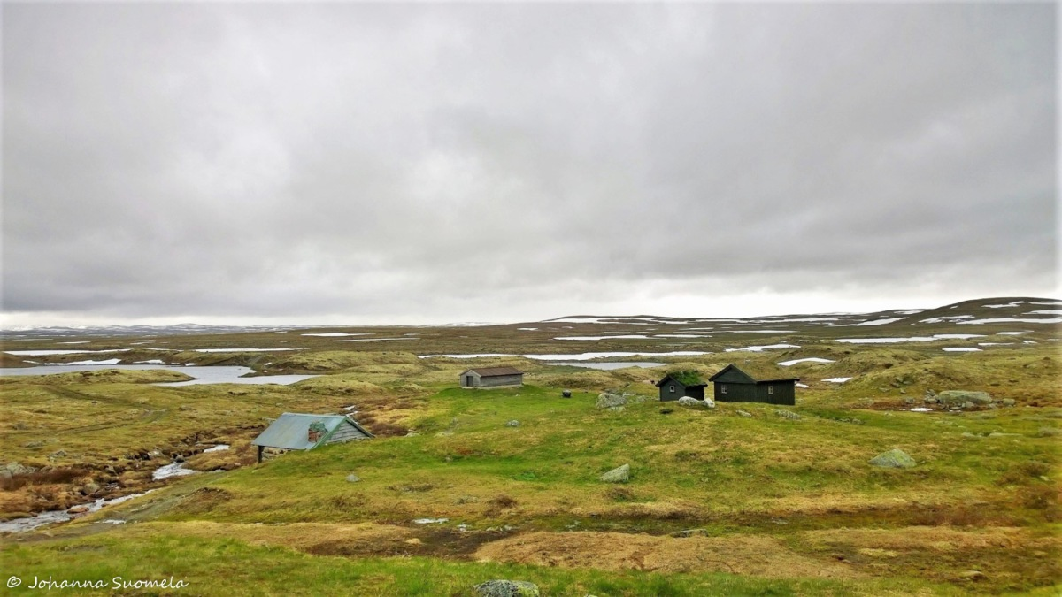 Hardangervidda20150718164240