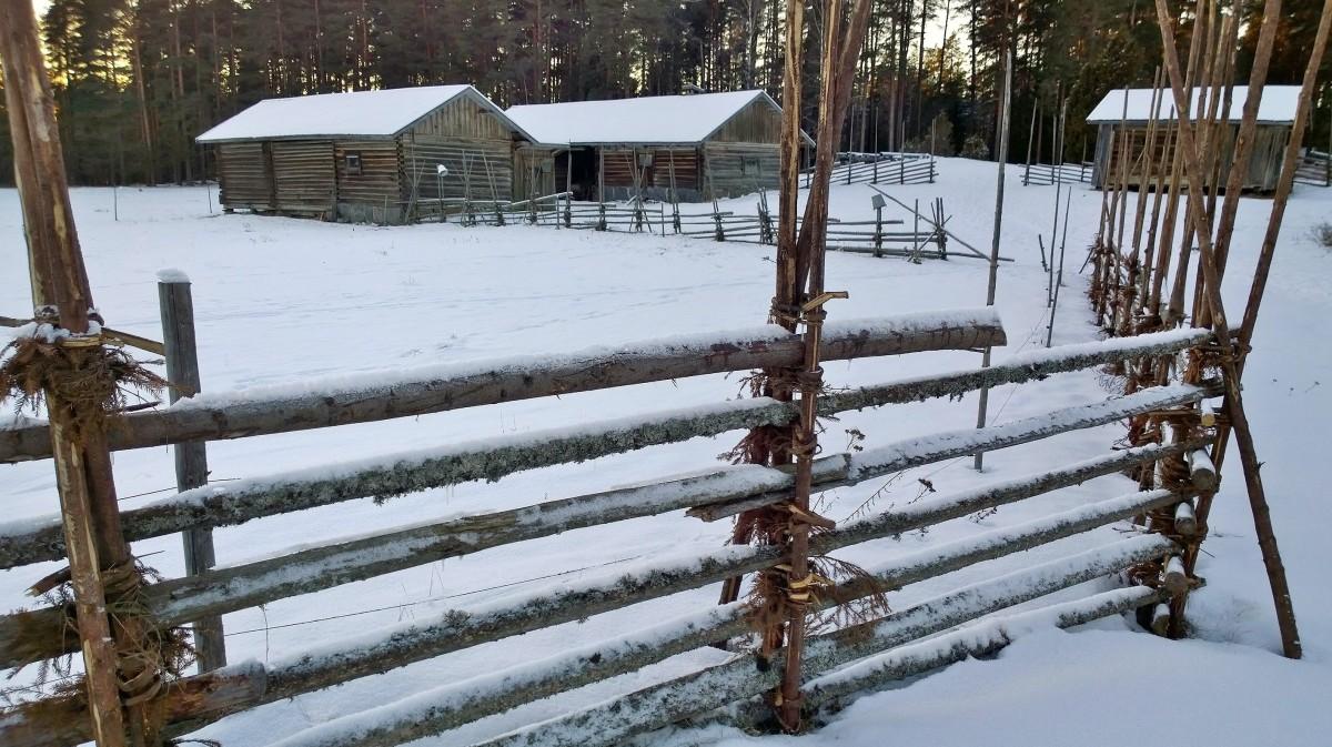 Korteniemen perinnetila, Liesjärven kansallispuisto