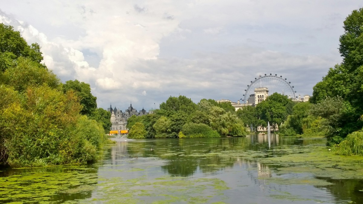 LondonEye from St. James Park