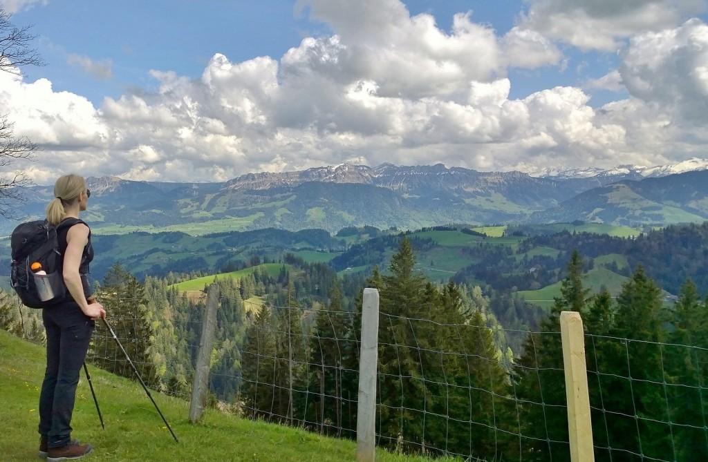 Napfin päiväpatikointi, Sveitsi