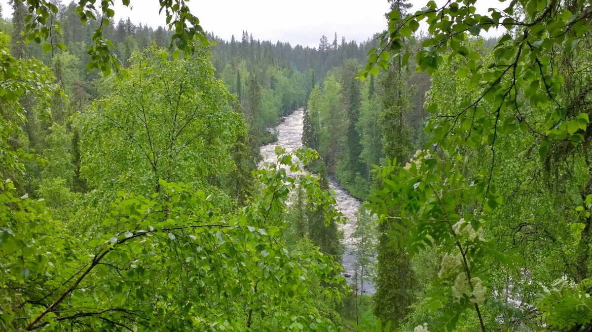 Pieni karhunkierros, Aallokkokoski