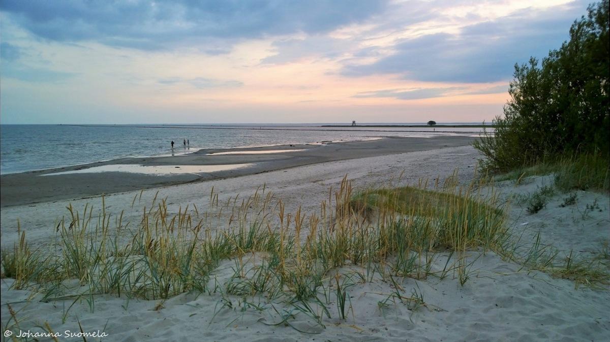 Parnu ranta hiekkadyyni