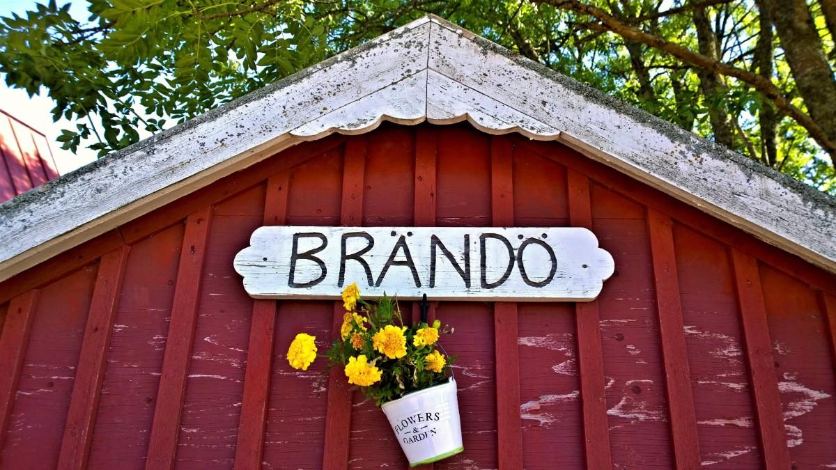 Brando_20160810_10_57_09_Pro