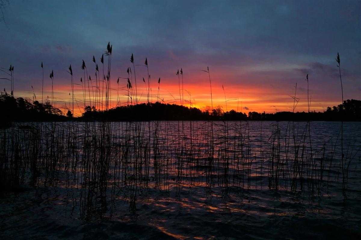 Uusivuosi auringonnousu