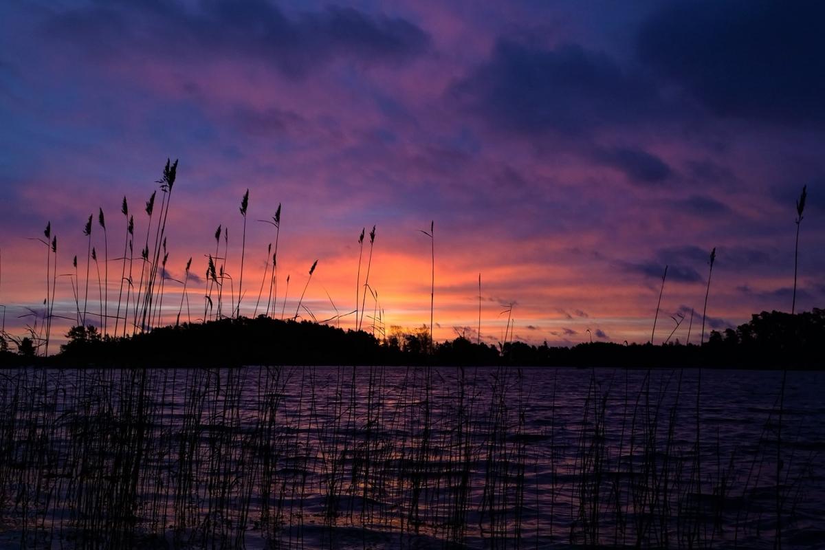 Tammisaaren auringonnousu