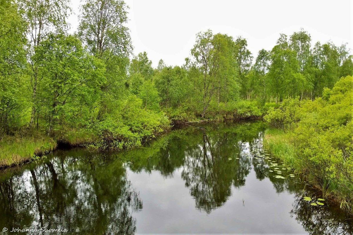 Koutajoen ylitys riippusillalla