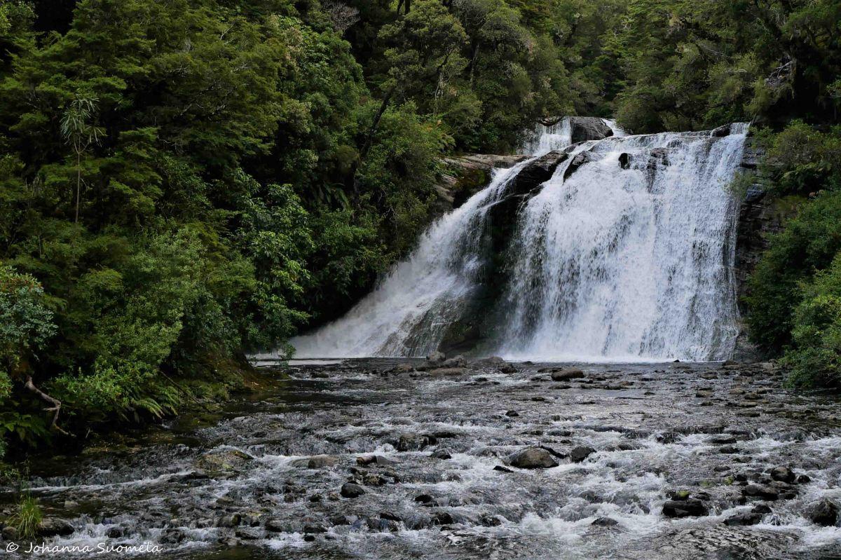 Te Urewera Aniwaniva Falls