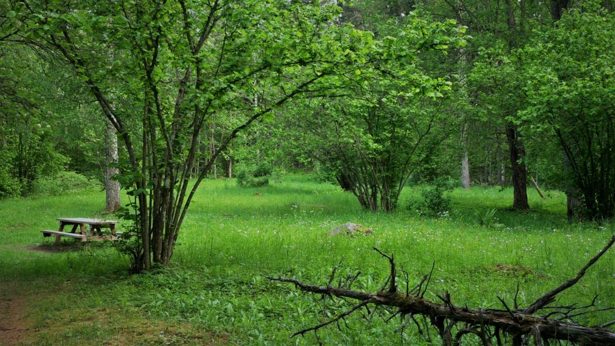 KarkalinLuonnonpuisto