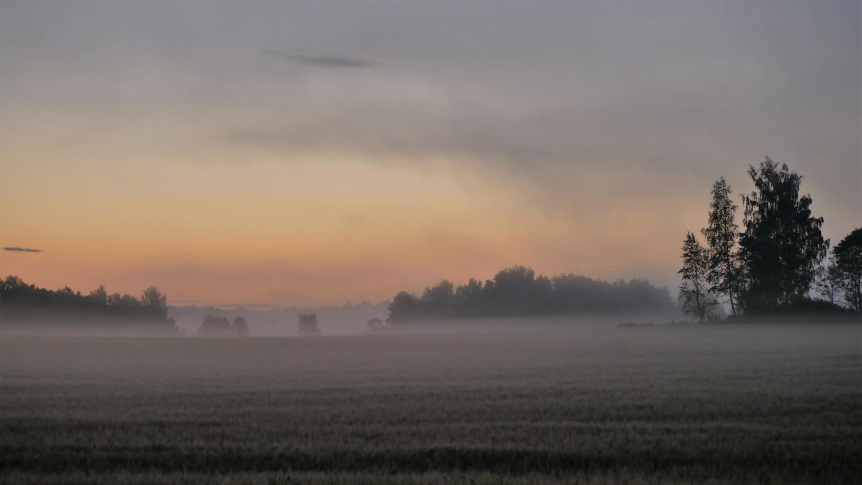 KarjaaLepinjarvi1120068